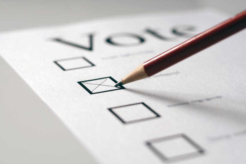Valgflæsk og valghveder
